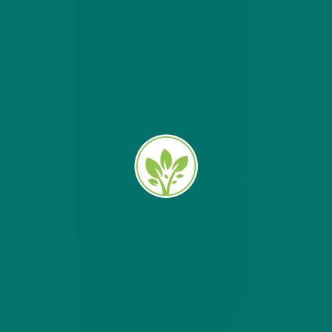 Logo NCG 2